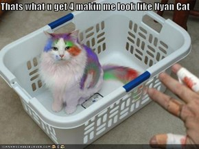 Thats what u get 4 makin me look like Nyan Cat
