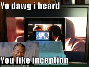 Yo dawg i heard   You like inception