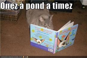 Onez a pond a timez