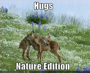 Hugs  Nature Edition