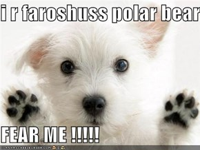 i r faroshuss polar bear -  FEAR ME !!!!!