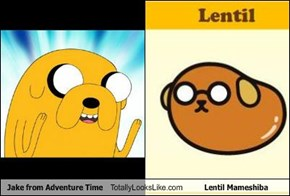 Jake from Adventure Time Totally Looks Like Lentil Mameshiba