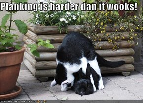 Planking is harder dan it wooks!