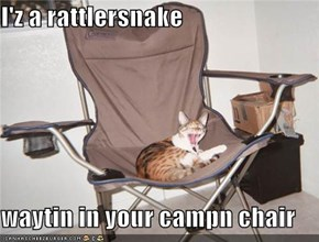 I'z a rattlersnake  waytin in your campn chair