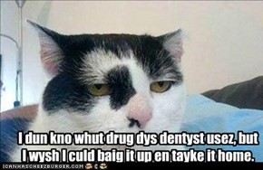 I dun kno whut drug dys dentyst usez, but I wysh I culd baig it up en tayke it home.