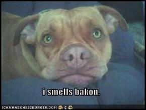 i smells bakon.