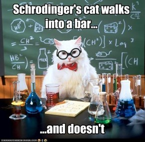 MemeCats: Chemistry Cat Strikes Again