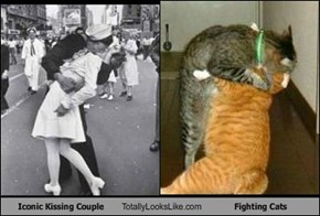 Iconic Kissing Couple Totally Looks Like Fighting Cats