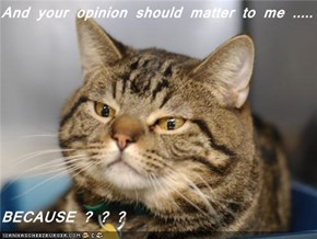 And your opinion should matter to me .....                            BECAUSE ? ? ?