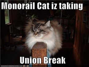 Monorail Cat iz taking  Union Break