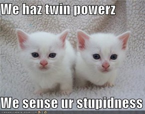 We haz twin powerz  We sense ur stupidness