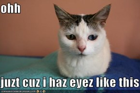 ohh  juzt cuz i haz eyez like this
