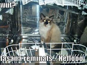 wut?  lasana reminats... Hellooo