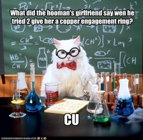 What did the hooman's girlfriend say wen he tried 2 give her a copper engagement ring?