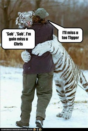Tigger and Christopher Robin Parting Ways
