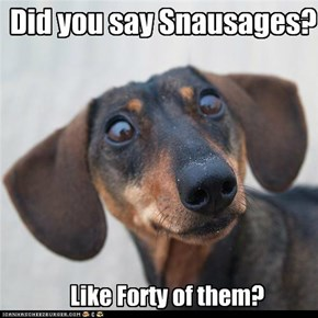 Did you say Snausages? Like Forty of them?