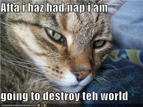 Afta i haz had nap i am  going to destroy teh world