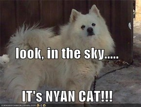 look, in the sky..... IT's NYAN CAT!!!