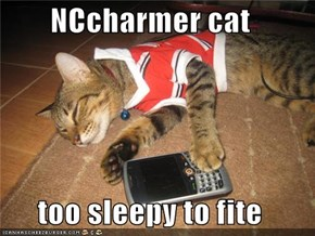 NCcharmer cat  too sleepy to fite