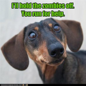 I'll hold the zombies off