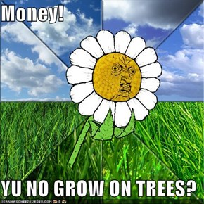 Money!  YU NO GROW ON TREES?