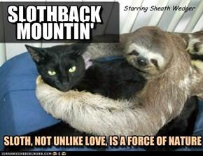 SLOTHBACK MOUNTIN'