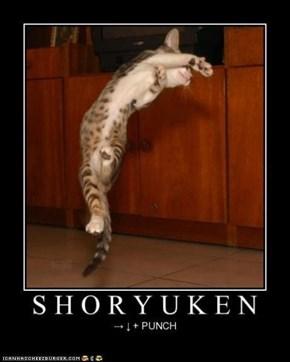 Ryu Kitteh