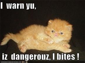 I  warn yu,   iz  dangerouz, I bites !