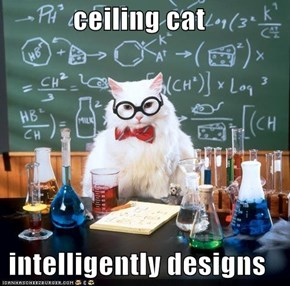 ceiling cat  intelligently designs