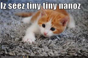 Iz seez tiny tiny nanoz