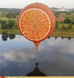 Orange slice Hot Air Balloon