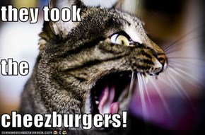they took the  cheezburgers!