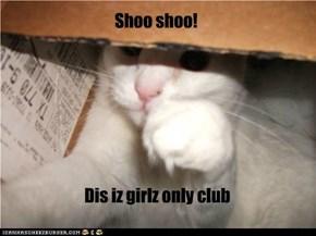 Shoo shoo!