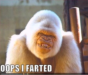 OOPS I FARTED