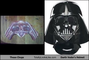 These Chops Totally Looks Like Darth Vader's Helmet