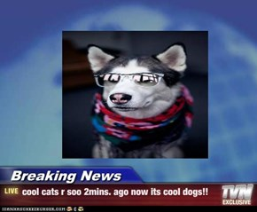 Breaking News - cool cats r soo 2mins. ago now its cool dogs!!