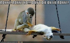 RONNY! RONNY NO!!! DON'T DIE ON ME RONNY!