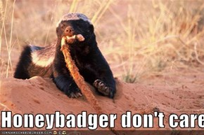 Honeybadger don't care