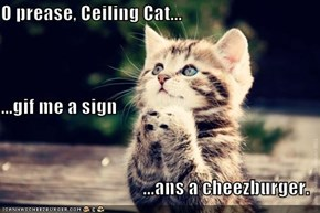 O prease, Ceiling Cat... ...gif me a sign ...ans a cheezburger.