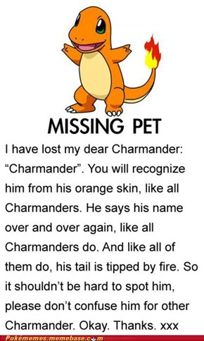 I Lost my Charmander