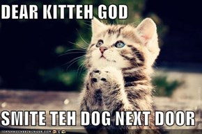 DEAR KITTEH GOD  SMITE TEH DOG NEXT DOOR