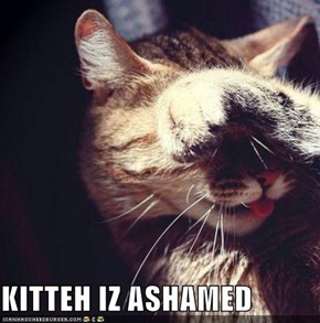 KITTEH IZ ASHAMED