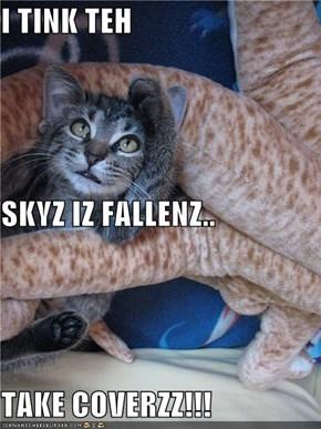 I TINK TEH  SKYZ IZ FALLENZ.. TAKE COVERZZ!!!