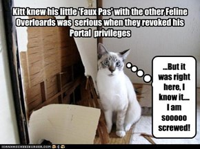 Kitt knew his little 'Faux Pas' with the other Feline Overloards was  serious when they revoked his Portal  privileges