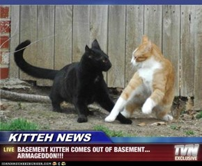 KITTEH NEWS - BASEMENT KITTEH COMES OUT OF BASEMENT... ARMAGEDDON!!!