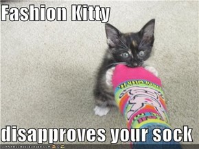 Fashion Kitty  disapproves your sock