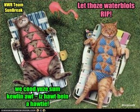 Let thoze waterblols  RIP!