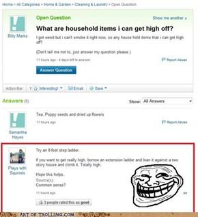 Sky High, Bro