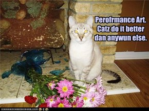 Perofrmance Art.Catz do it better dan anywun else.
