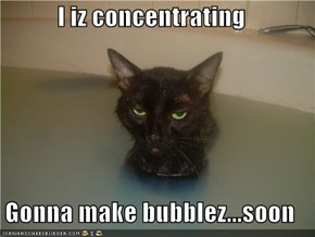 I iz concentrating  Gonna make bubblez...soon